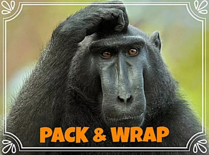 Разница между английскими словами pack и wrap